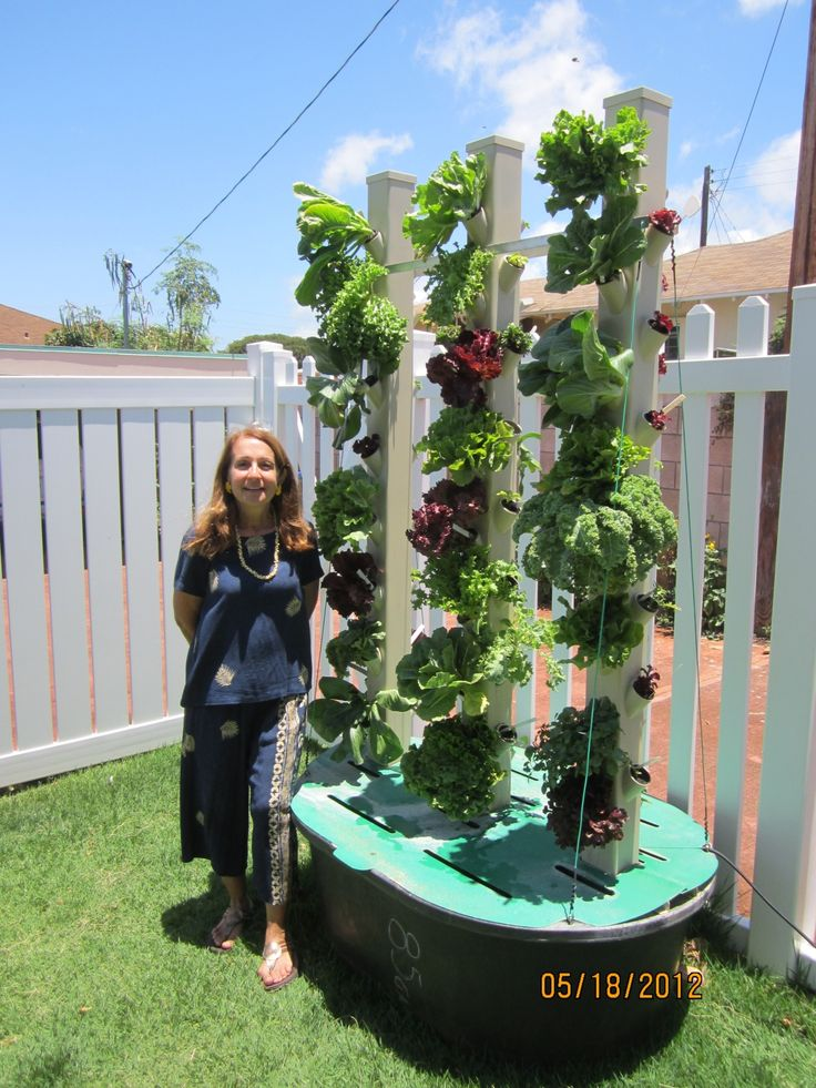 Do It Yourself Home Design: Best Aquaponics Backyard Set Up