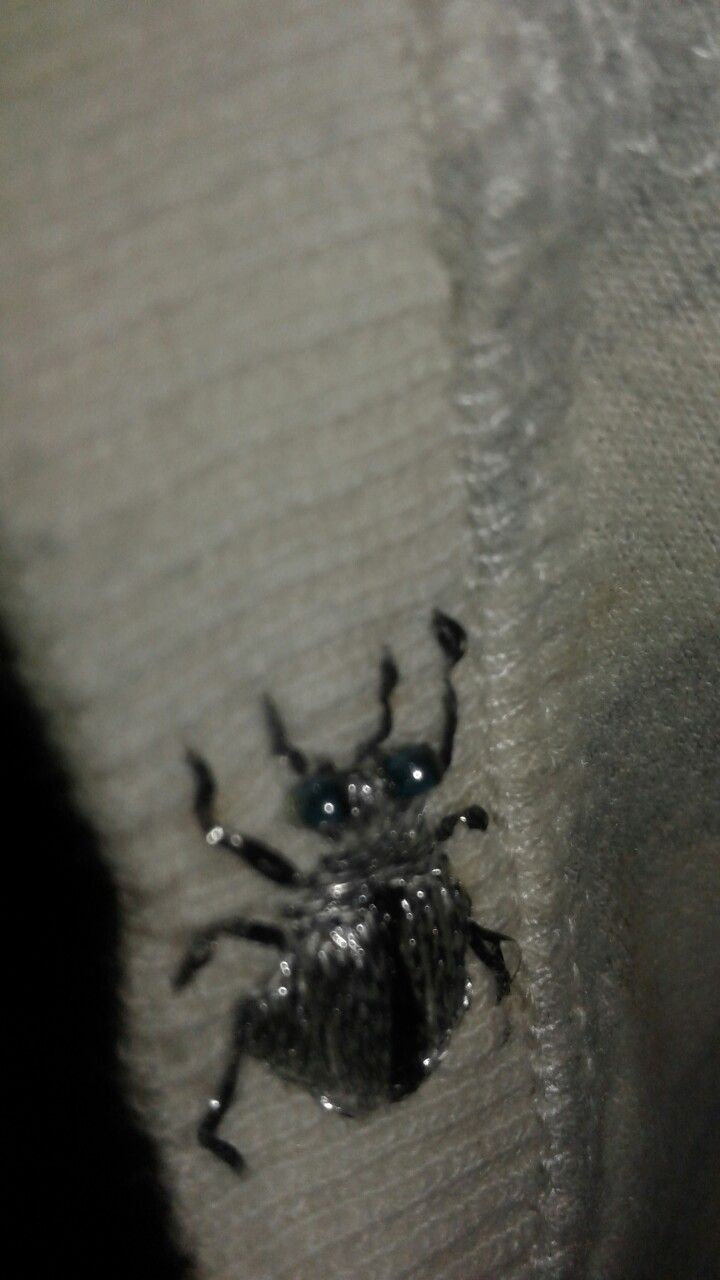 Embroidered silver beetle to keep me company on shirt  collar
