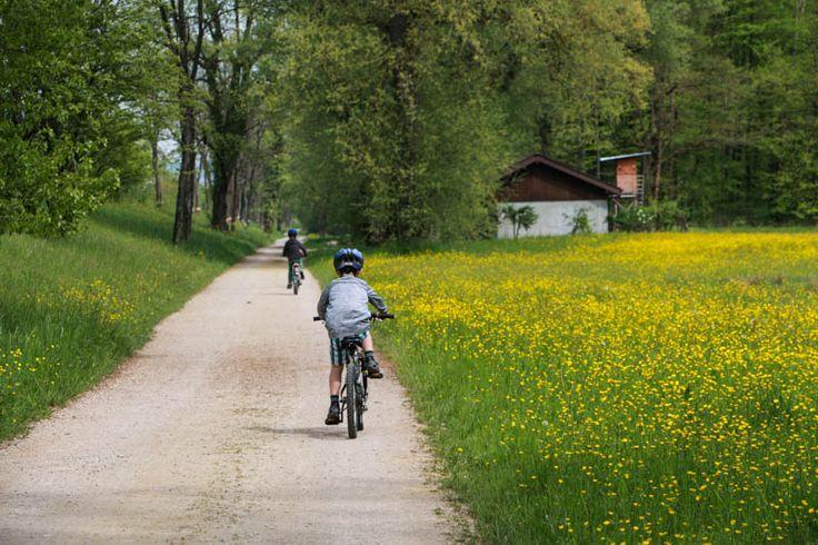 Bike Ride on Aare River: Aarau to Brugg