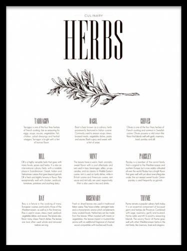 Herbs Type, poster i gruppen Posters och prints / Kökstavlor hos Desenio AB (7849)