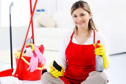 Hiring Domestic Cleaning Experts help keep your Home Clean