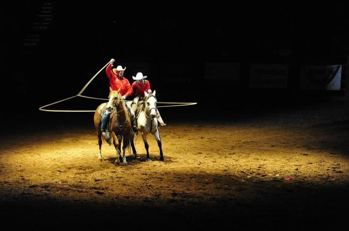 17 Best Images About Rodeo On Pinterest Cattle Barrel