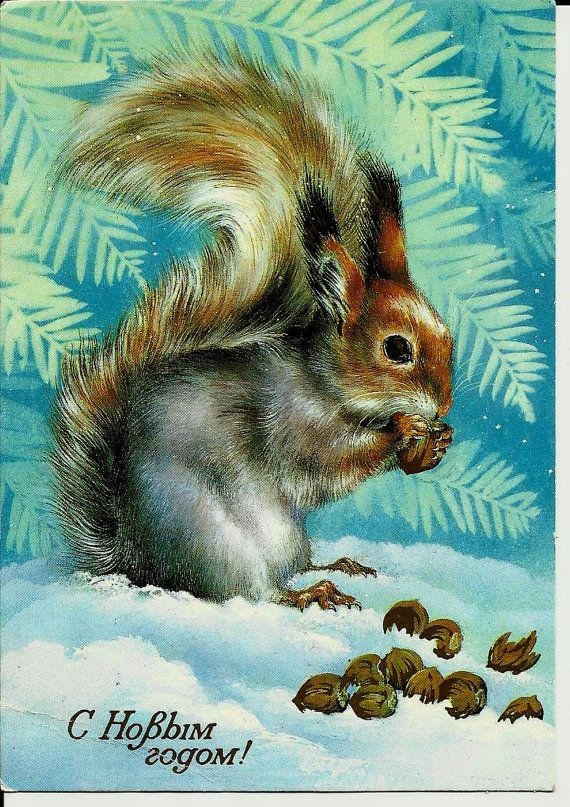Squirrel - Vintage  Russian Postcard - Happy New Year - Christmas card
