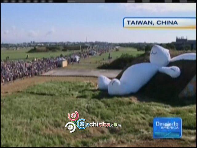 Conejo Gigante En Taiwan Se Prendió En Fuego #Video