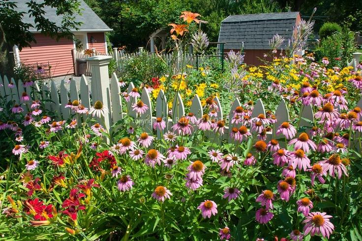 Backyard Flower Garden Photos : Found on gardenphotoscomphotosheltercom