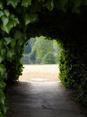 Inside the Ivy tunnel beside Kenwood House on Hampstead Heath.  Total magic for me each and everytime I've passed through it. (as seen in the movie Notting Hill)