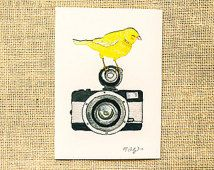 Kamera sanat, kuş sanat baskı, bağbozumu kamera sanatı, kanarya, sarı, kreş sanat, 5x7 baskı