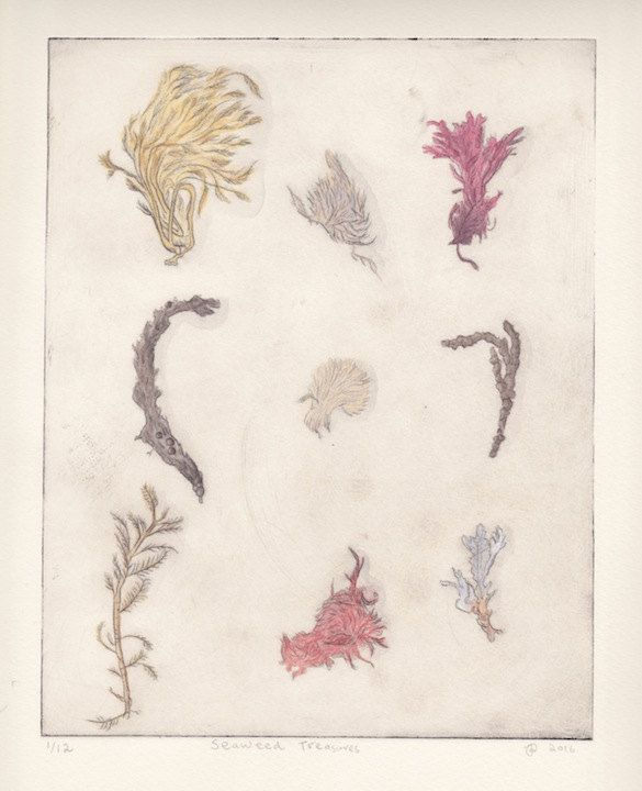 Seaweed Treasures by JessicaParkerArt on Etsy