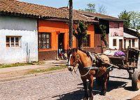 Chile Molina, Región del Maule, típica zona rural chilena.