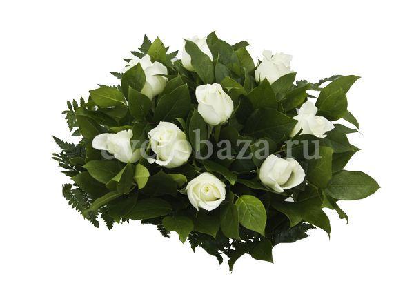 СВЕЖЕСТЬ. Нежный и изысканный, этот букет подчеркнёт торжественность и радость любого события. Королевская белоснежная роза, подчёркнутая изумрудными переливами зелени, необыкновенное сочетание! В любое время года, этот букет, выполненный в бело-зелёной цветовой гамме принесёт воспоминания о романтичной весне и первых весенних цветах Упаковка: прозрачная плёнка.