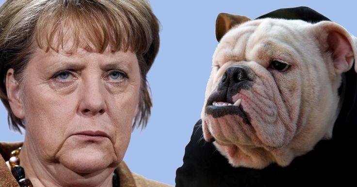In einem Kommentar über Deutschlands neues Zensurgesetz spricht Dr. Paul Craig Roberts Klartext und bezeichnet Angela Merkel als das was sie ist: Eine Hure Washingtons!