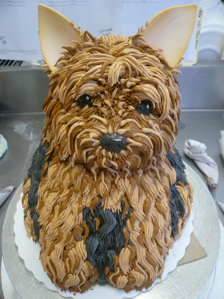 It's a Yorkie cake!!: Dogs Parties, Cakes Ideas, Birthday Parties, Yorkie Cakes, Amazing Cakes, Awesome Cakes, Yorkshire Terriers, Dogs Cakes, Birthday Cakes