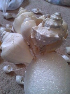 Beach Brides... or Beach theme wedding. DIY Seashell Bouquet (w/pictures) | Weddings, Do It Yourself, Fun Stuff, Planning | Wedding Forums |...
