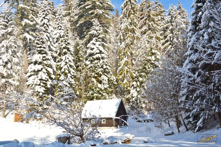 Cabanuta de la Buhiu - iarna 2016