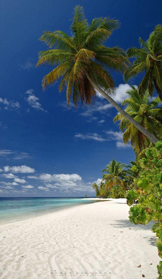 Filitheyo Island - Maldives