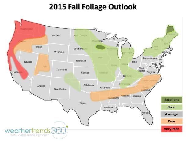 Before you plan your fall foliage road trip, get the peak forecast.