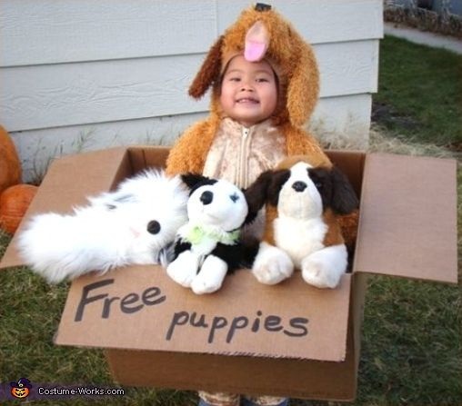 Free Puppies - Reminds me of my son when he was young...always peddling those puppies!!