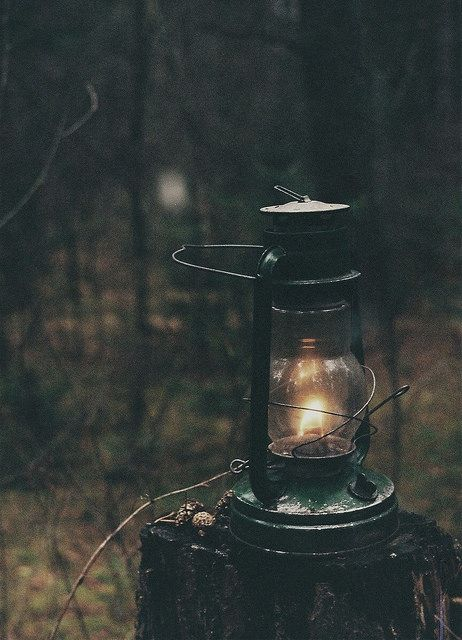 Telling stories in the wood with a nostalgic lamp.