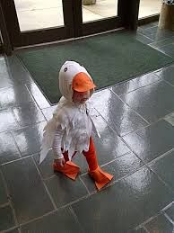 goose costume for children - Szukaj w Google