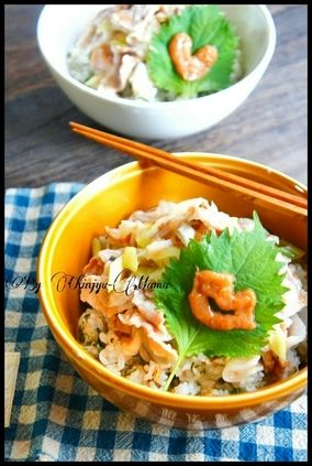 簡単【レンジで完成】薬味ライスの梅塩豚丼|レシピブログ