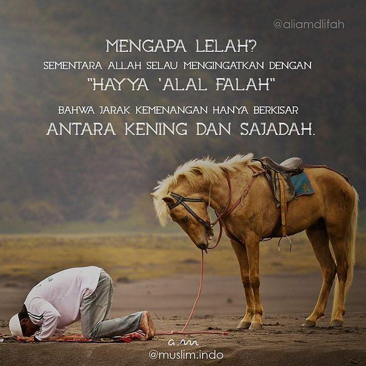 "Mengapa lelah? Sementara Allah selau mengingatkan dengan ""Hayya 'alal falah"" Bahwa jarak kemenangan hanya berkisar antara kening dan sajadah http://ift.tt/2f12zSN"
