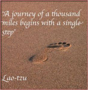 journey zefe coaching