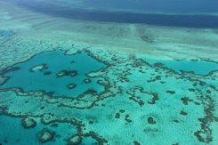 Blanchiment des coraux, fonte des glaciers, incendies... Le changement climatique menace un quart des sites naturels du Patrimoine mondial, soit presque deux fois plus qu'il y a trois ans, s'est...