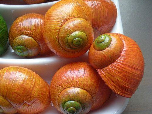 Ulity - oranžové se zeleným čumákem