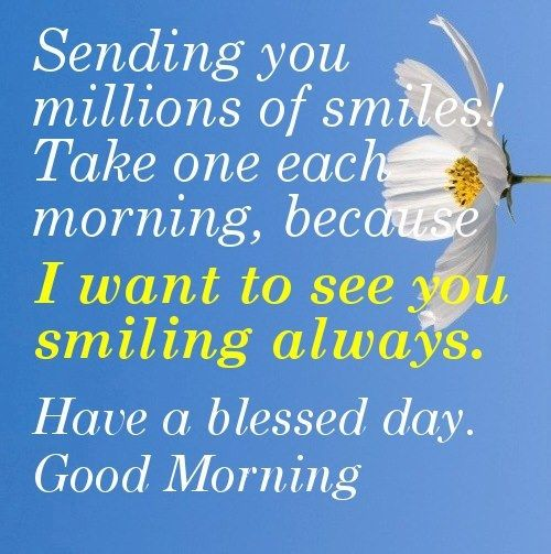 Have A Blessed Morning Pictures, Photos, and Images for Facebook, Tumblr, Pinterest, and Twitter