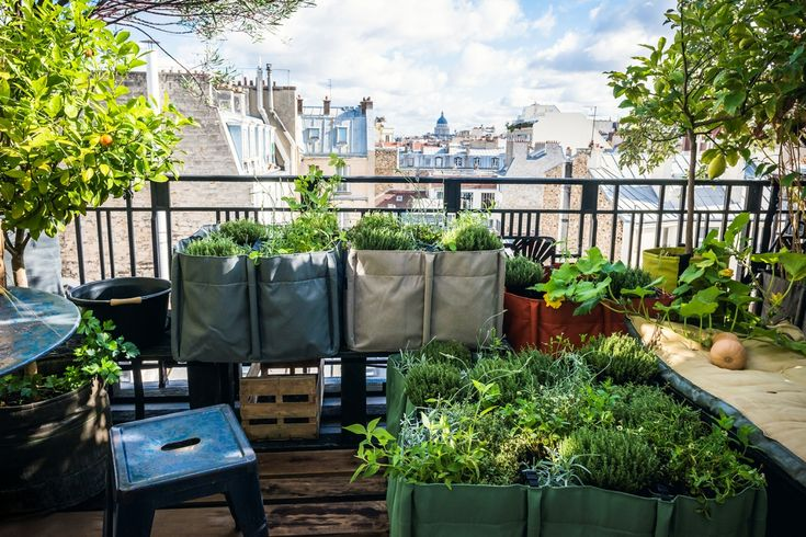 17 best urban gardening raschle images on pinterest apartment gardening urban gardening and. Black Bedroom Furniture Sets. Home Design Ideas