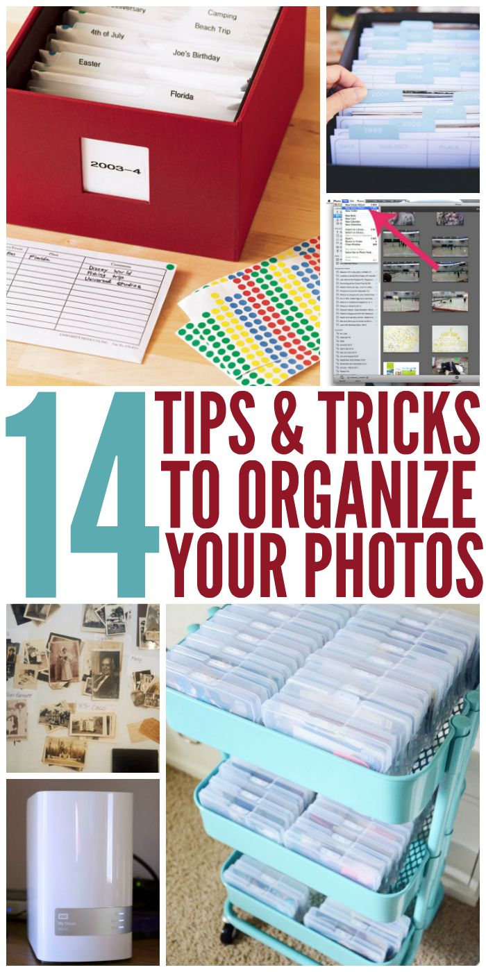 I need these tips for organizing my photos. -One Crazy House
