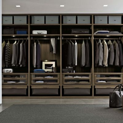 Storage U0026 Closets Walk In Closet Design Ideas, Pictures, Remodel And Decor