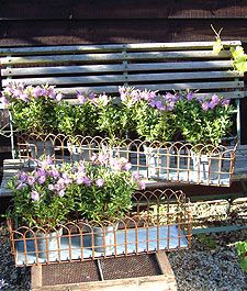 Victorian Window Boxes - could be made from wire garden fencing welded to metal base, or with holes drilled in wooden box base - nice displays or window boxes, I like these! (inspiration only)  **you already have the wire fencing!!!! Paint it black!!!**