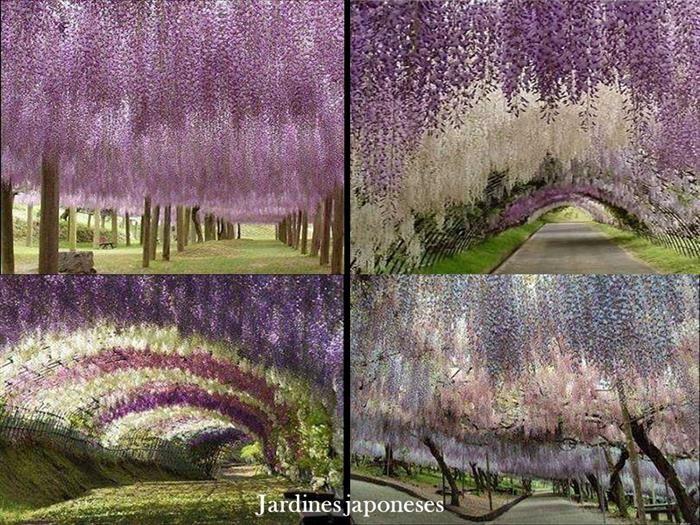 Mejores 24 im genes de jardines japoneses en pinterest - Jardines y paisajes ...