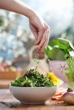 Dieta vegana o vegetariana? Come farla nel modo più equilibrato - Consumi - Kataweb - Soluzioni quotidiane