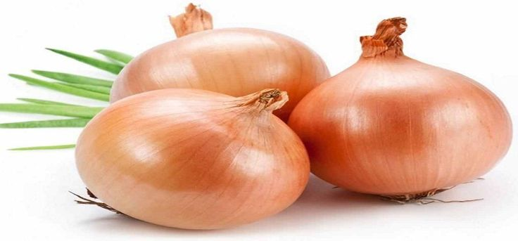 Onion on your feet for body detoxification