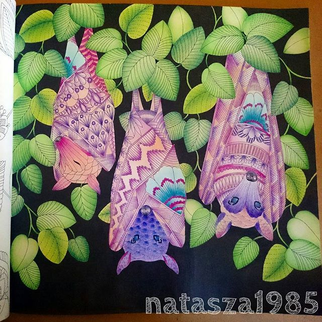 Bats From Tropicalwonderland By Milliemarotta Coloringbook Colouringbook Colors Colorful
