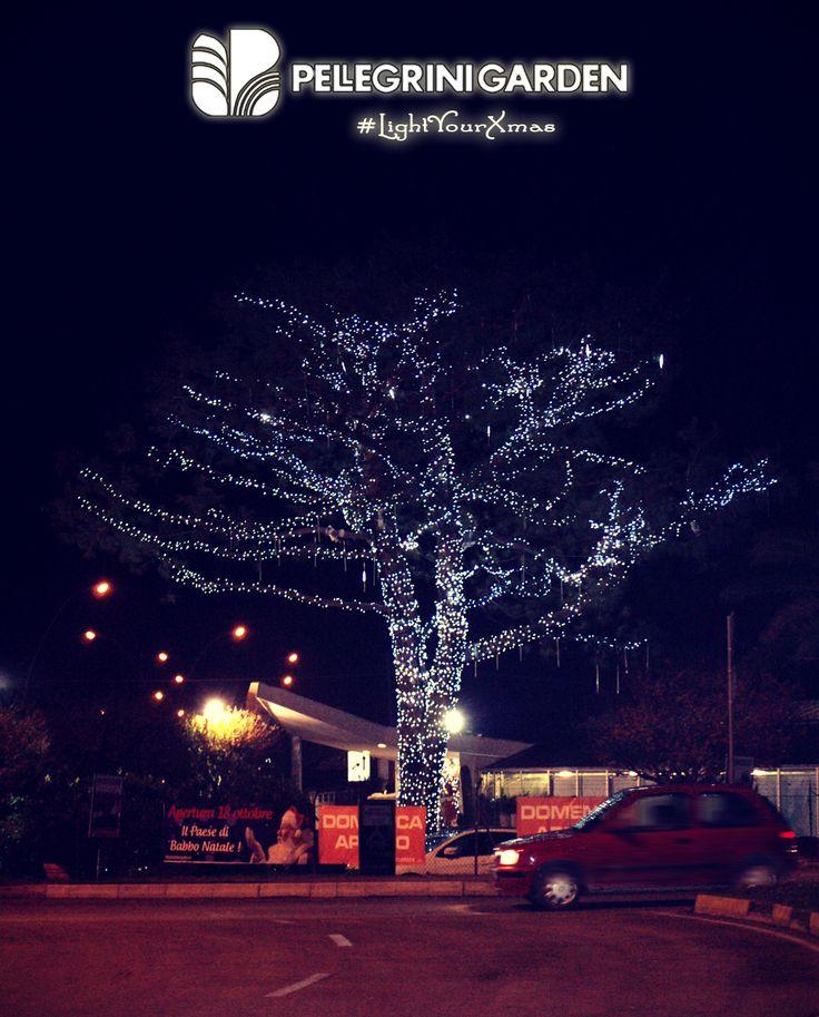 """Pellegrini Garden illumina il tuo Natale!  Stiamo lavorando per accendere la magia del #Natale nella nostra città... Nei prossimi giorni pubblicheremo le nostre """"opere"""" e ti inviteremo a fare lo stesso con l'hashtag #lightyourxmas!"""