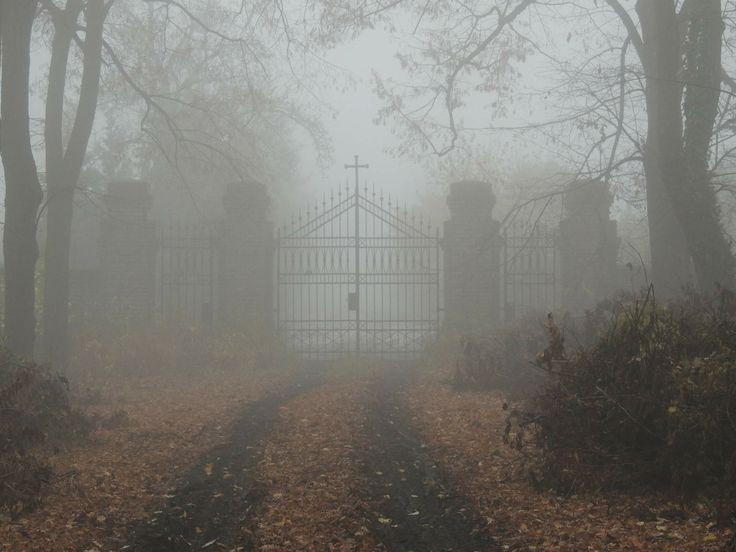 Hlavní brána v pochnurné mlhavé podzimní atmosféře