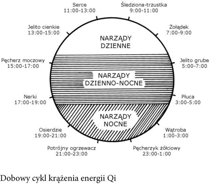 Chiński - zegar - energetyczny - krążenie - energetyzujący - energia