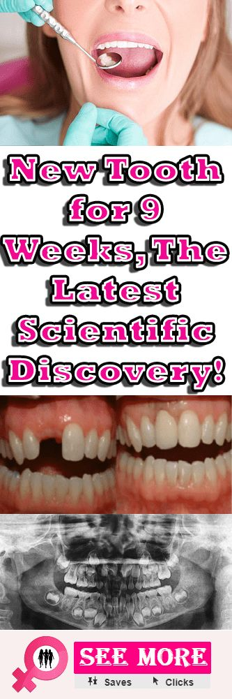 New Tooth for 9 Weeks, The Latest Scientific Discovery!