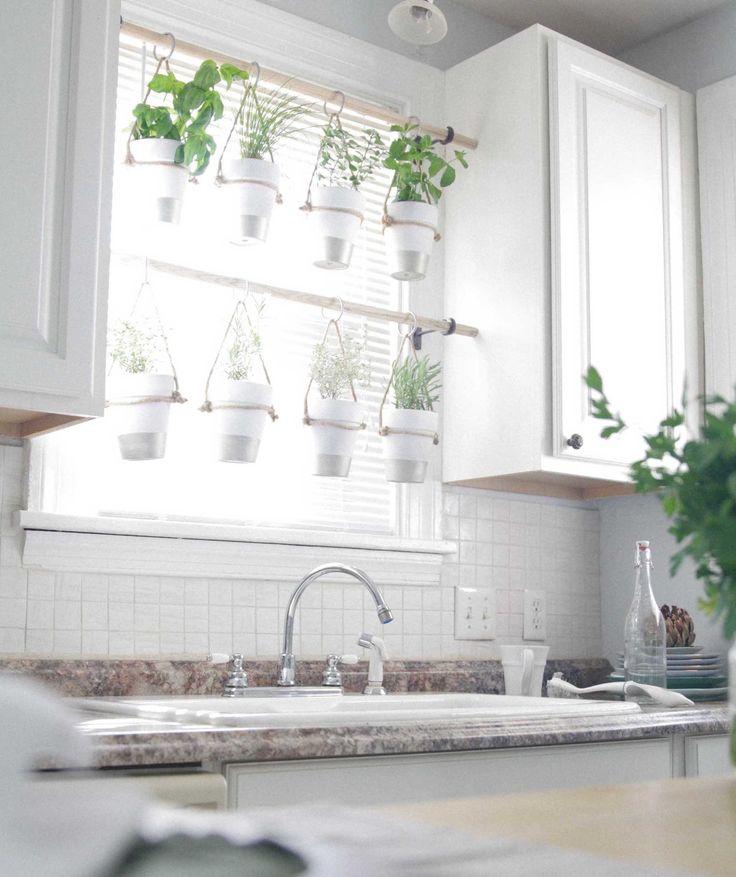 Kitchen Garden Ideas Pinterest: Best 25+ Hanging Herb Gardens Ideas On Pinterest