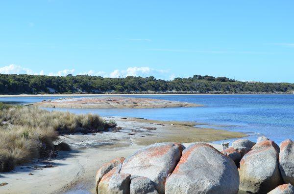 Lady Barron, Flinders Island. Article and photo by Roger Findlay for www.think-tasmania.com