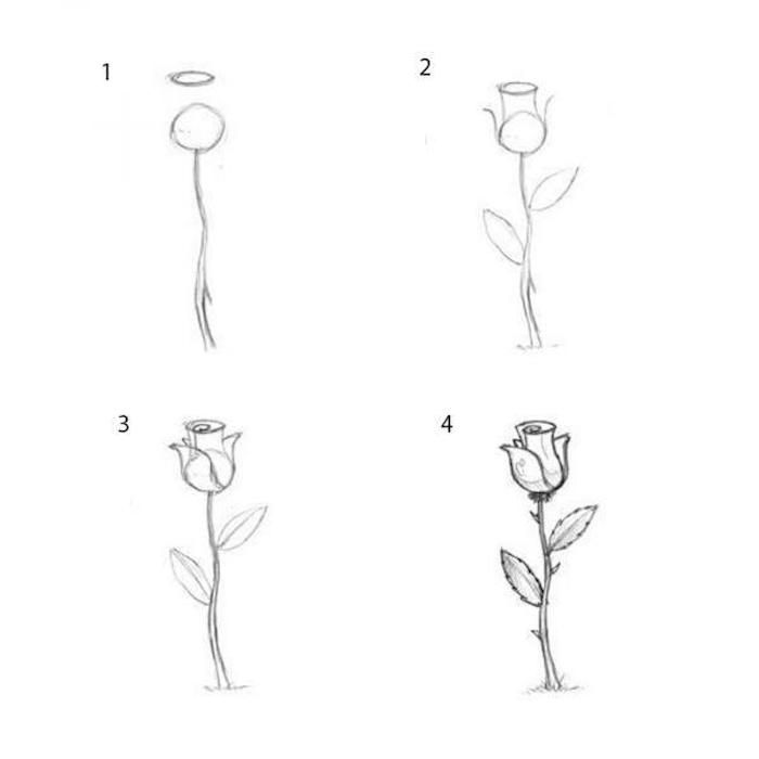 1001 Ideas Sobre Como Dibujar Una Rosa Paso A Paso Dibujos De Rosas Inspiracion Dibujo En Lapiz Dibujos