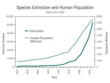 ExtinctionAndPopulation_102609