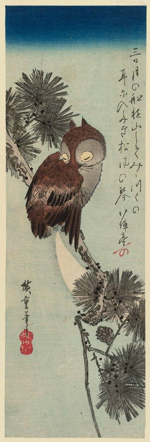 Utagawa Hiroshige: Small Horned Owl in a Pine Tree - Museum of Fine Arts