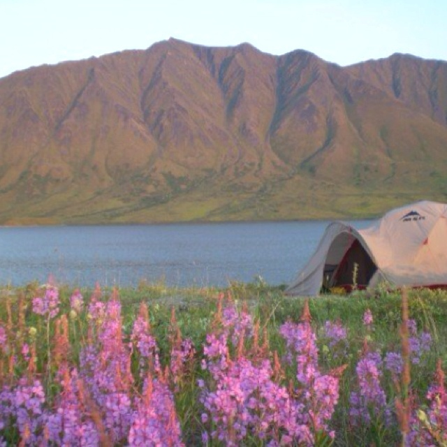 63 Best Yurts Images On Pinterest