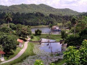 Scenery in Las Terrazas Cuba
