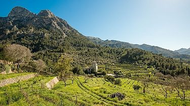 a view over the gully of Biniaraix in soller