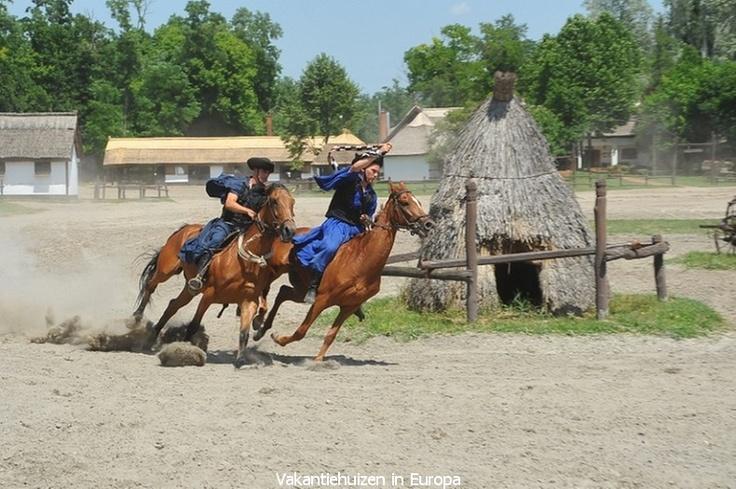 Paardenshow op de Puszta in Hongarije.